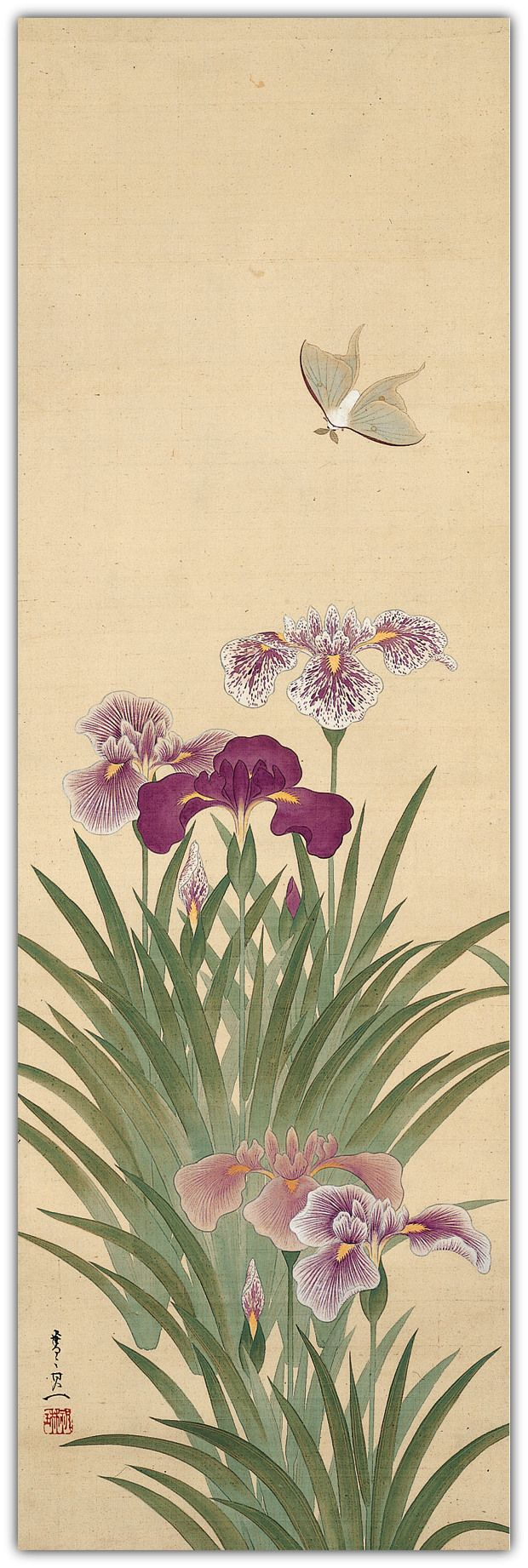 Irises and Moth. Suzuki Kiitsu (鈴木其一; 1796–1858). Edo period. Hanging scroll; ink, color, and gold on silk. 101.6 x 33 cm (40 x 13 in.) | Donated to The Metropolitan Museum of Art, New York by the Mary and Jackson Burke Foundation in 2015
