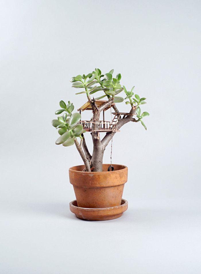 ... Für Ihre Kinder Im Garten Hinter Dem Haus Ist Natürlich Super Schön  Geeignet, Um Darin Zu Spielen, Aber Ein Baumhaus Oder Baumhäuschen Für Ihre  Pflanze?