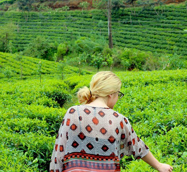 The tea fields in Sri Lanka on our last West End Tea Co. trip!   westendteaco.com.au