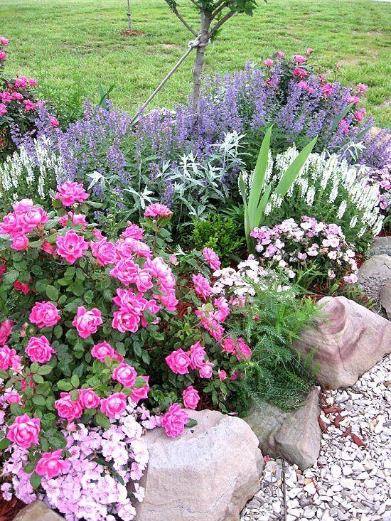 best 25 rose garden design ideas on pinterest backyard garden design garden design and home garden design
