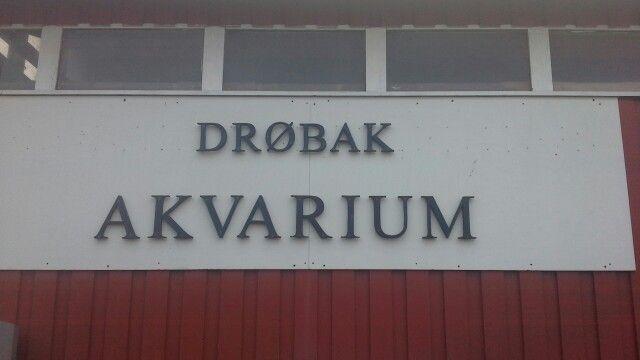 Drøbak Undervannsklubb