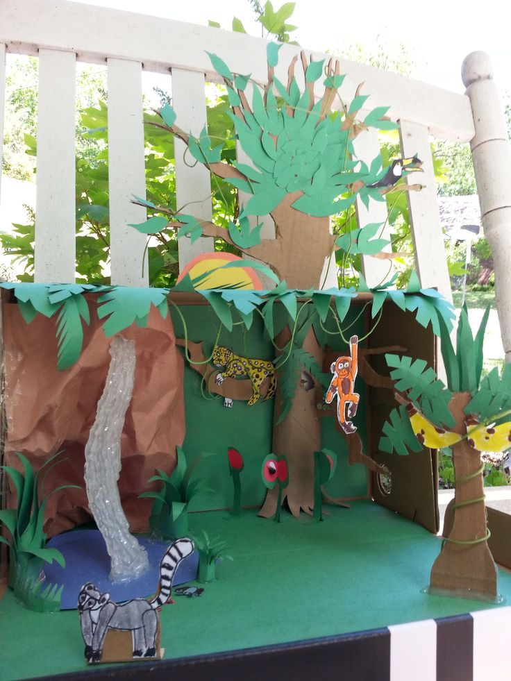 how to make forest model for school project