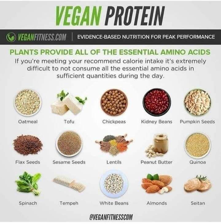 a4e42ed4cad9876c79922d410563aecd - How To Get All Your Amino Acids As A Vegan