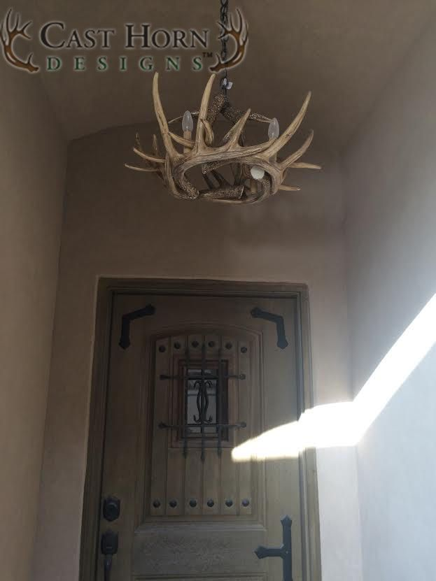 Whitetail Deer 6 Antler Chandelier from Cast Horn Designs