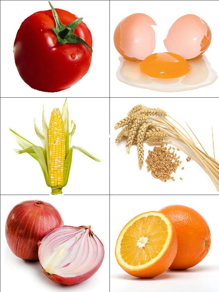 Αινίγματα και υγιεινή διατροφή