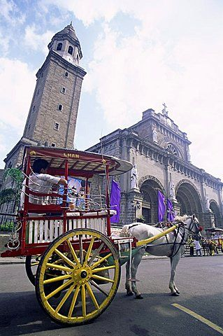Calesa (horse drawn carriage) in front of Manila Cathedral in the Intramuros Historical District, Manila, Philippines, Southeast Asia, Asia