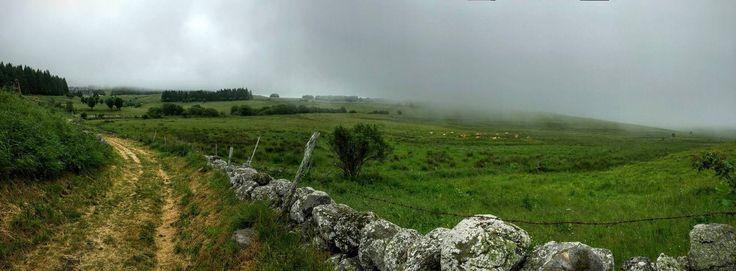 Aubrac in the mist