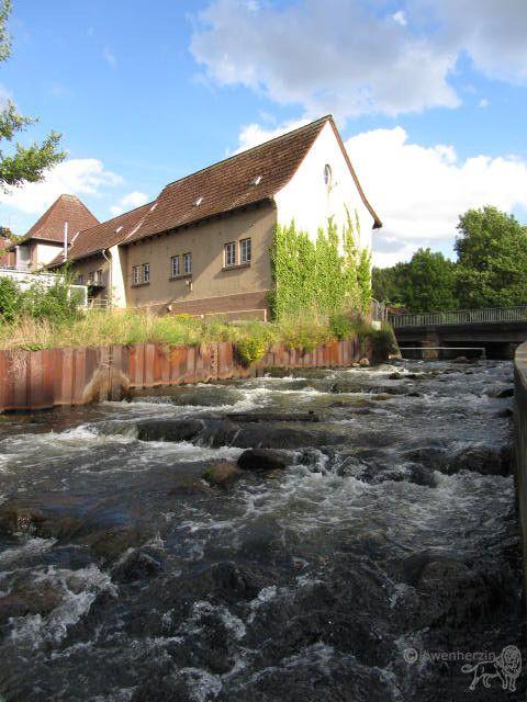 Amazing Wasserverband Braunschweig Mittlere Oker