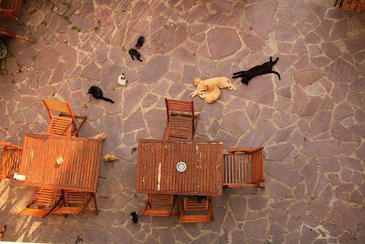 столы и стулья для двора - Поиск в Google