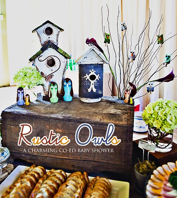 Crazy-cute owl-themed baby shower