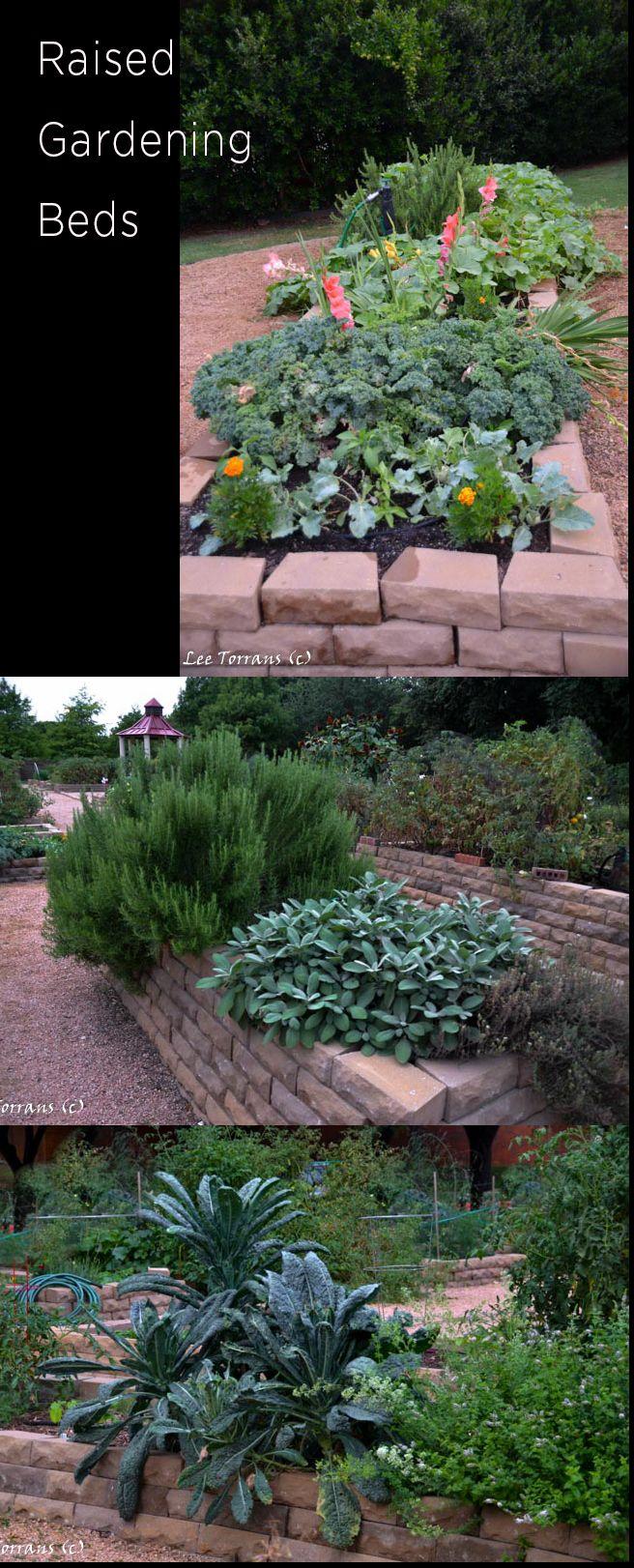 Lee Ann Torrans Gardening | The Latest Gardening Gadgets Getting Young Trees Through Hot Times | http://leeanntorrans.com