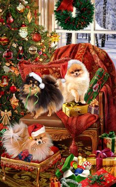 Finally!  This is going to be my house christmas morning! Poms over everything!
