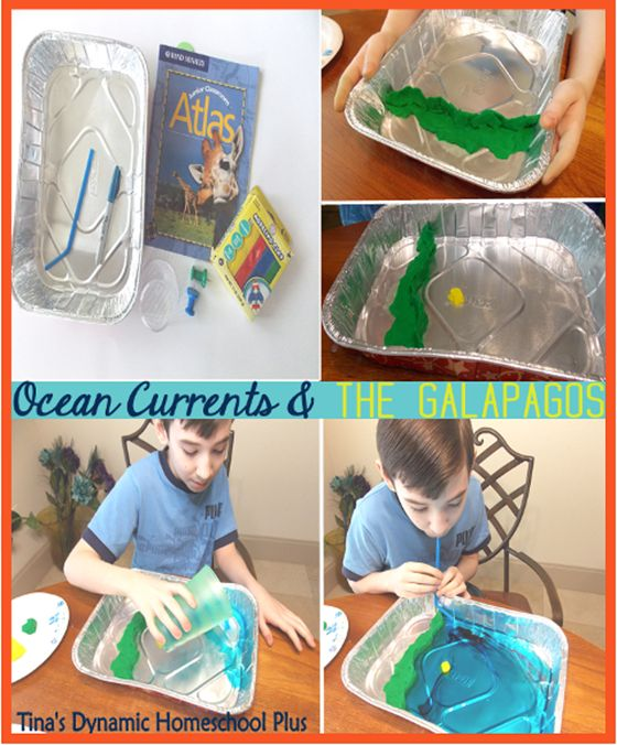 Humboldt Who? Hands On to Understand Ocean Currents & Their Affect On The Galapagos Islands  #geography #handsongeography #homeschool