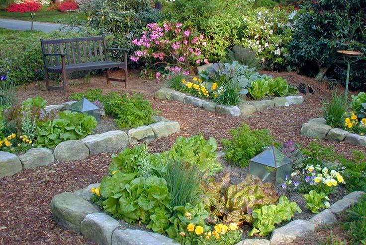 How To Grow A Beautiful Organic Garden ** Quickly view this special product, click the image : Organic Gardening