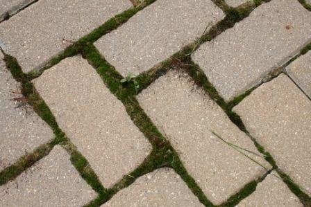 25 Best Ideas About Brick Pavers On Pinterest Paver