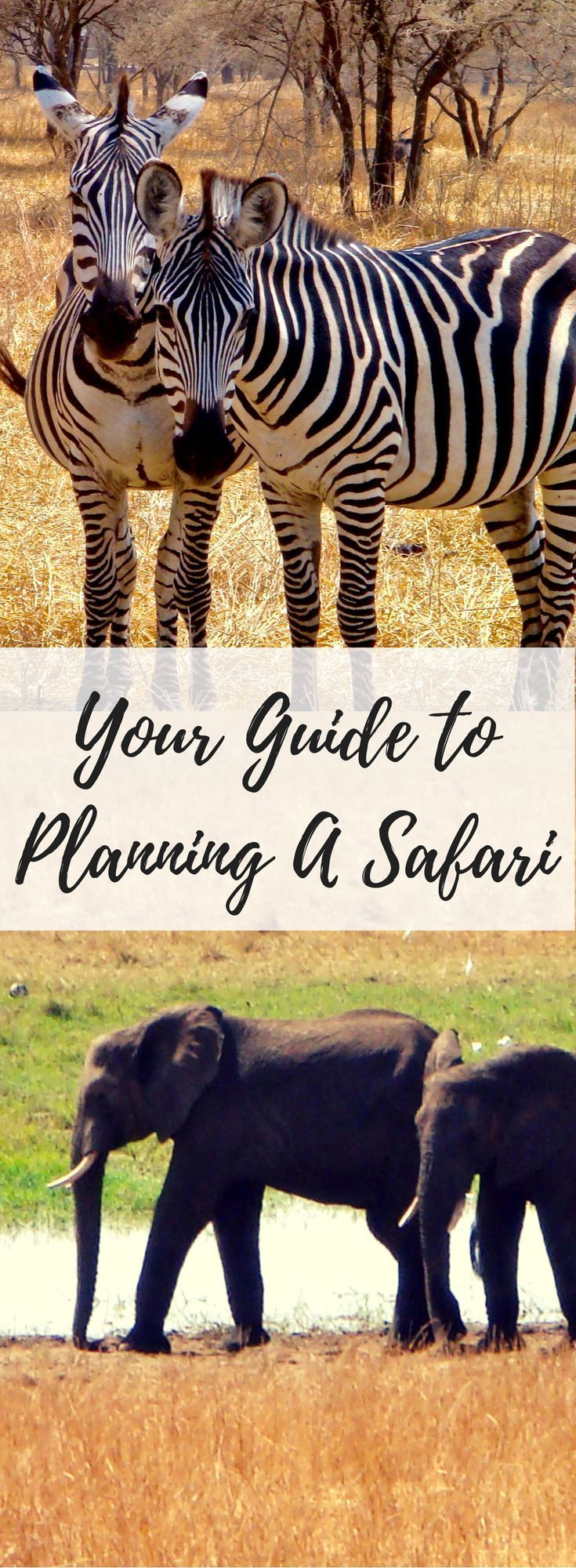 A Complete Safari Itinerary for Tanzania.  Includes the Serengeti, Lake Manyara, Ngorongoro Crater and much more
