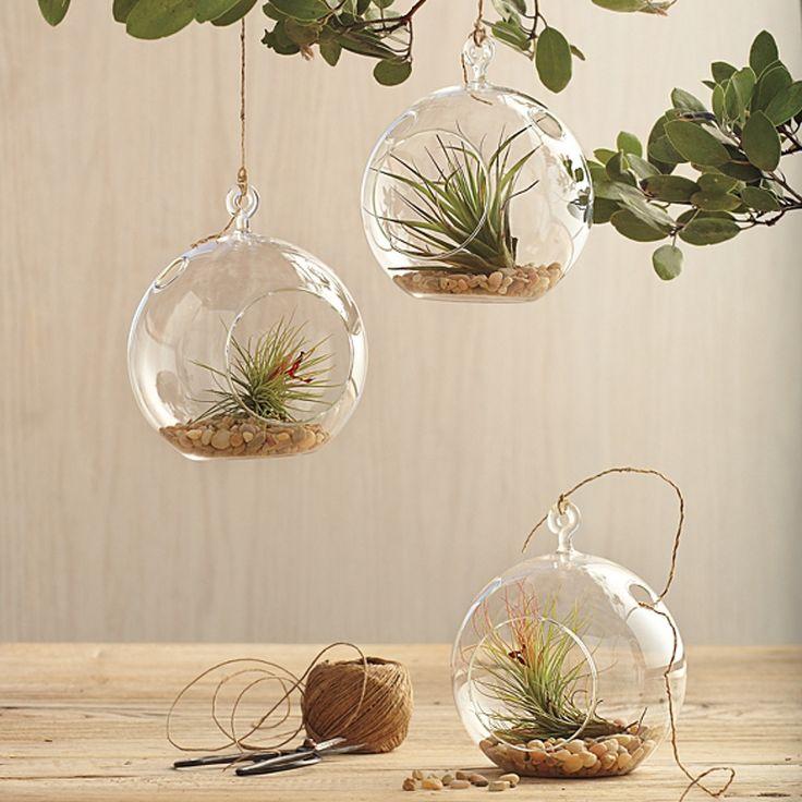 me encanta esto de reciclar cosas para usarlos con plantas