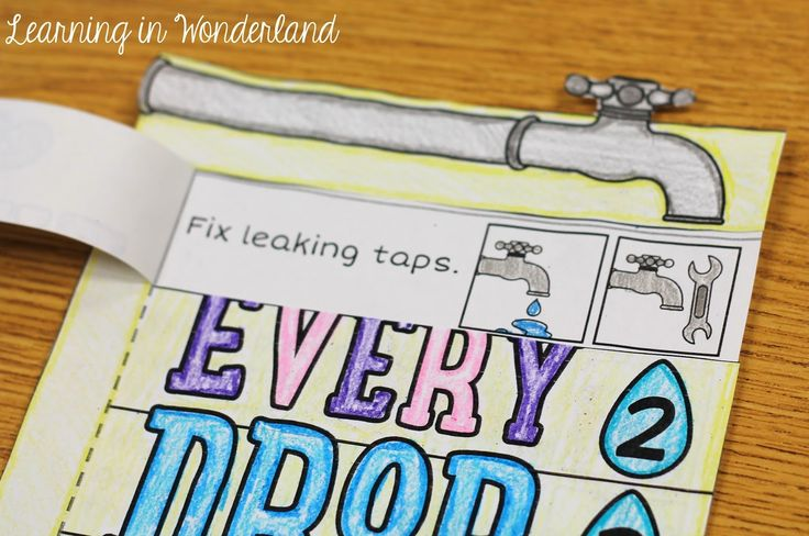 Water Conservation Foldable - Learning In Wonderland