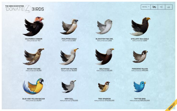 Creative Agency DLX Inc Create A New Ecosystem with the Donate 4 Birds App