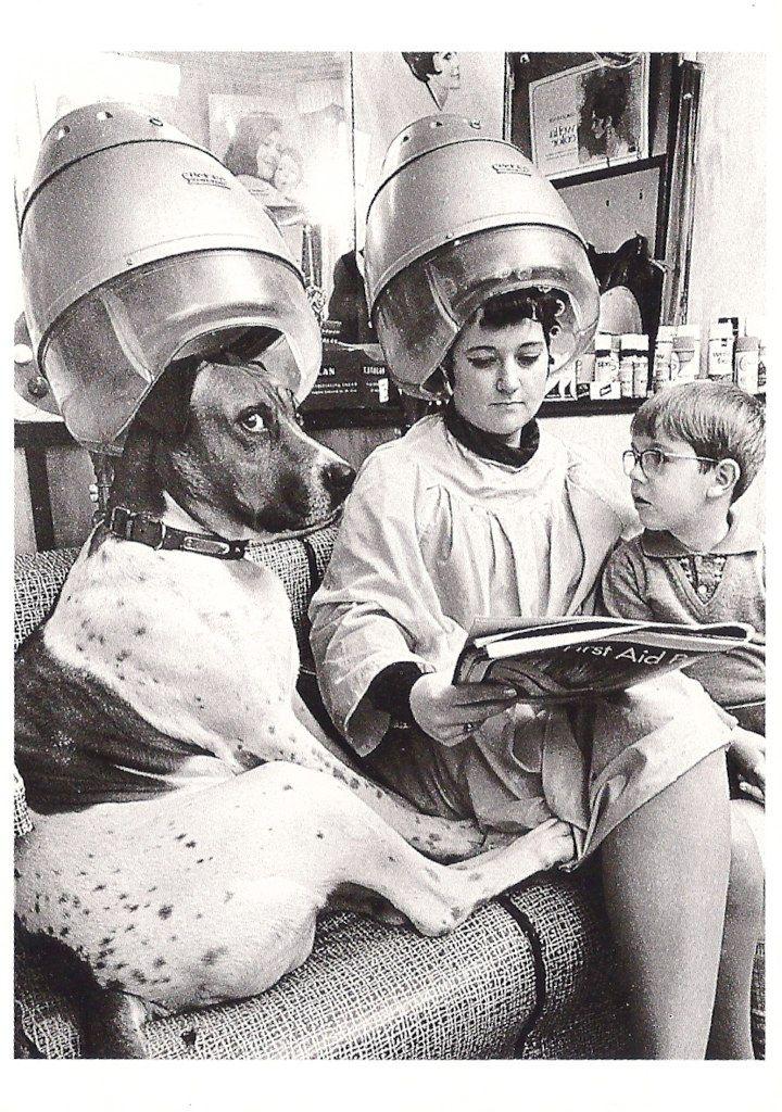 vintageeveryday: Hairdresser's Hot Dog, c. 1960.Photograph by John Drysdale.