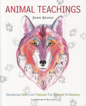Animal Teachings: Enhancing Our Lives Through the Wisdom of Animals by Dawn Brunke (CICO Books) is an beautifully illustrated resource on personal qualities we can learn from observing animal behaviors.