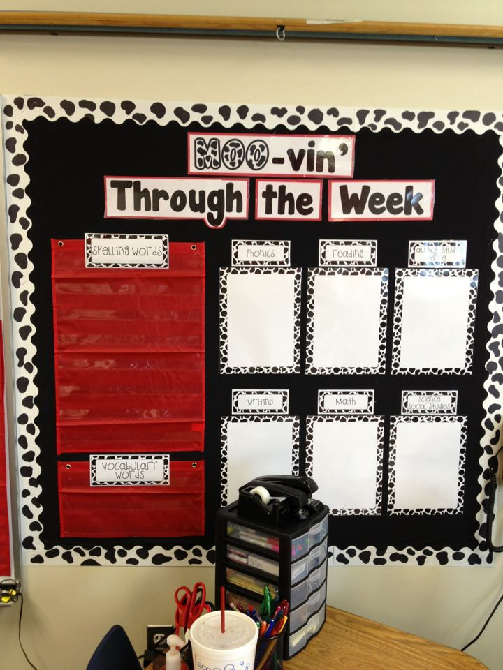 Not crazy about the cow theme. But I love that the spelling words and vocab are posted by the weekly objectives.