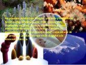 PROCESOS PRODUCTIVOS Y DESARROLLO SUSTENTABLE