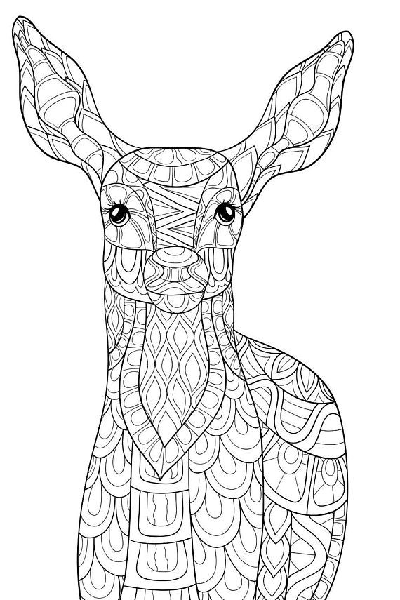 294 best coloring deer images on Pinterest | Adult ...