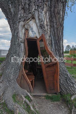Malutki pokoik w pniu starej topoli. Kraj: Polska, Wieś: Chudów — Zdjęcie stockowe © EwelinaBanaszak #109723970