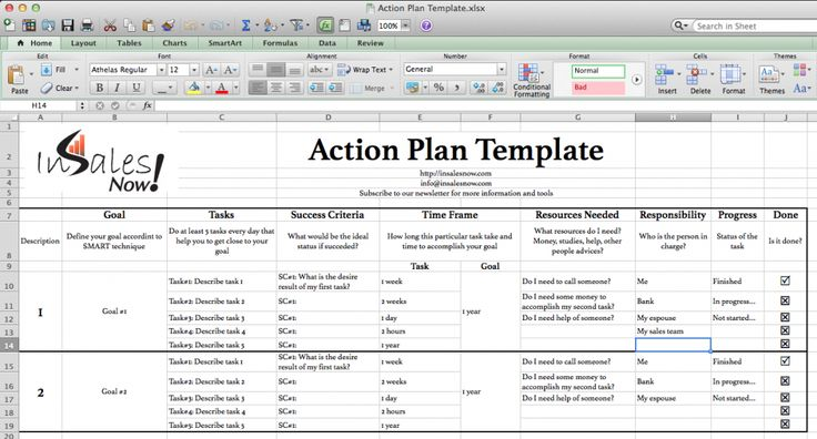 Perfect Business Action Plan Template Example in Excel with Goal and Tasks and Success Criteria and Progress : Thogati