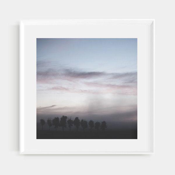 Yarra Valley. The Dawn X II