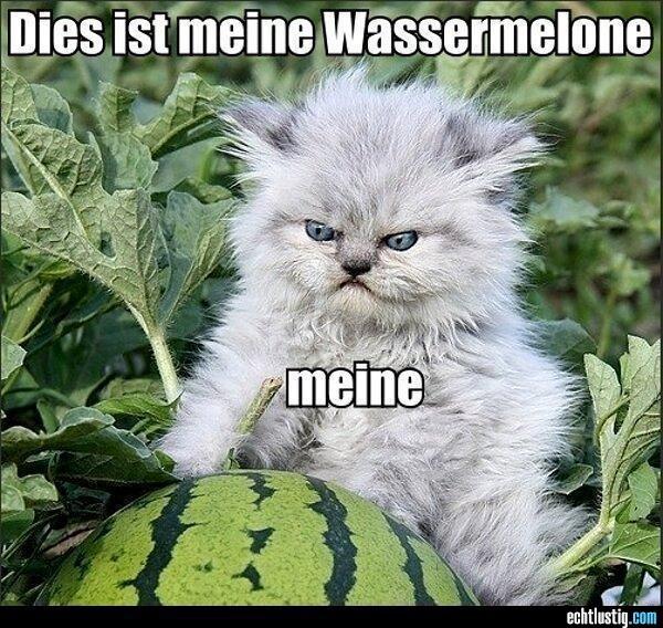 A little German humor.
