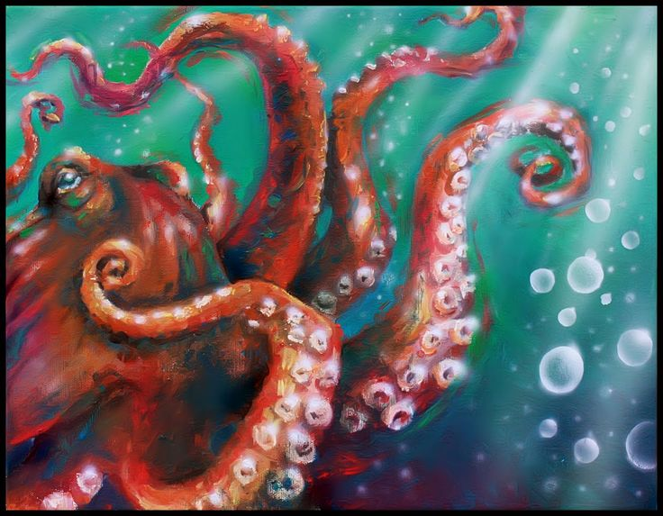 50 best octopi images on pinterest octopus octopuses for Colorful octopus painting