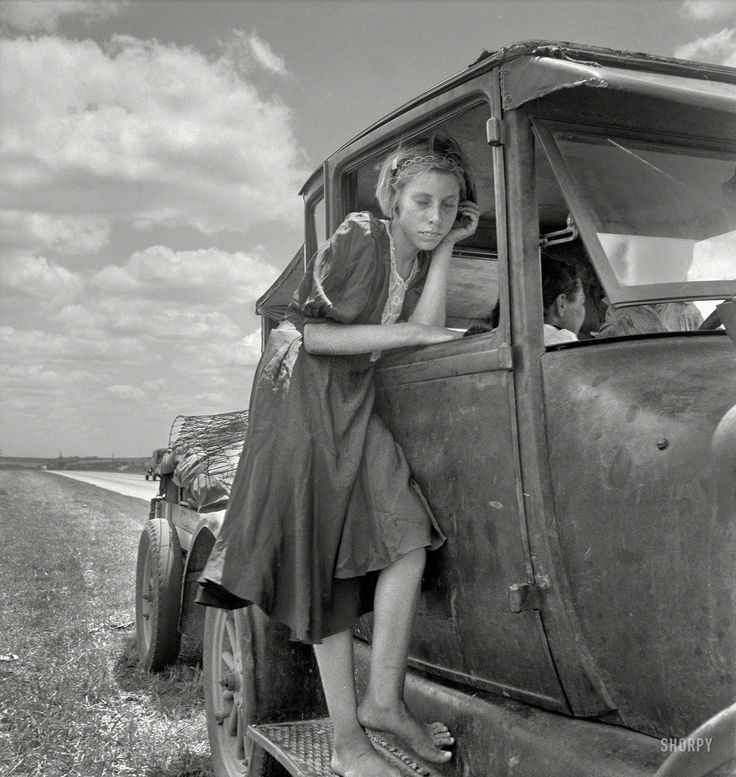 Shorpy Historical Photo Archive :: Following the Cotton: 1937
