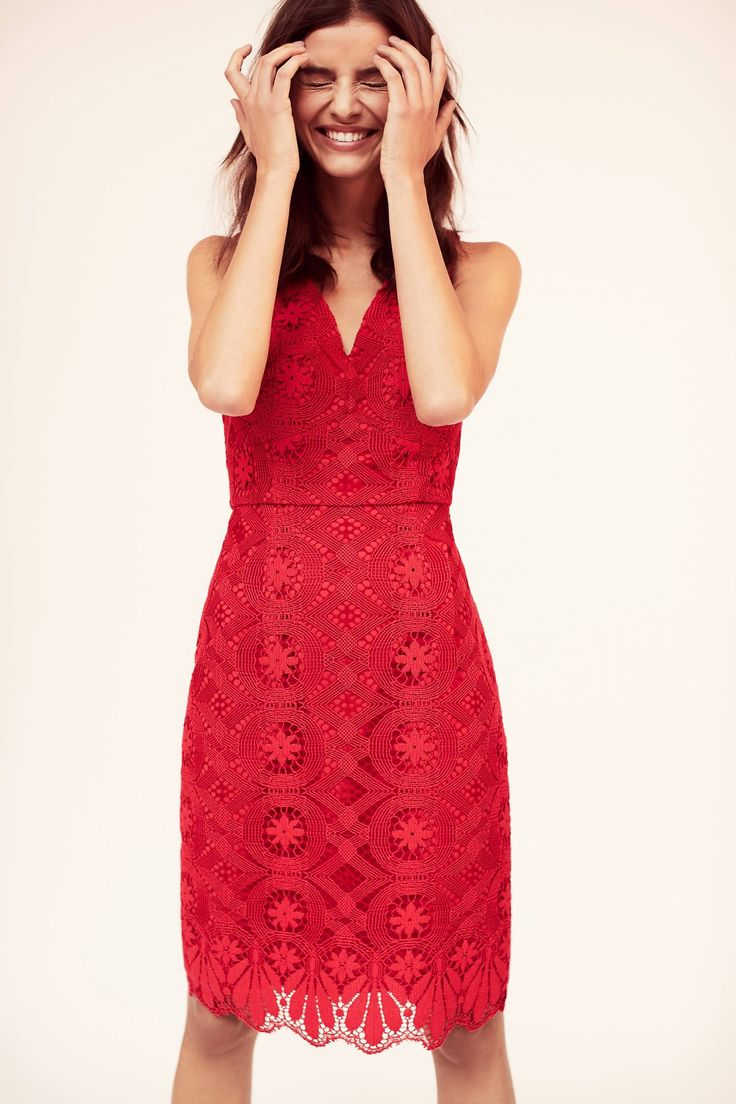 Shop the Camari Lace Column Dress and more Anthropologie at Anthropologie today. Read customer reviews, discover product details and more.