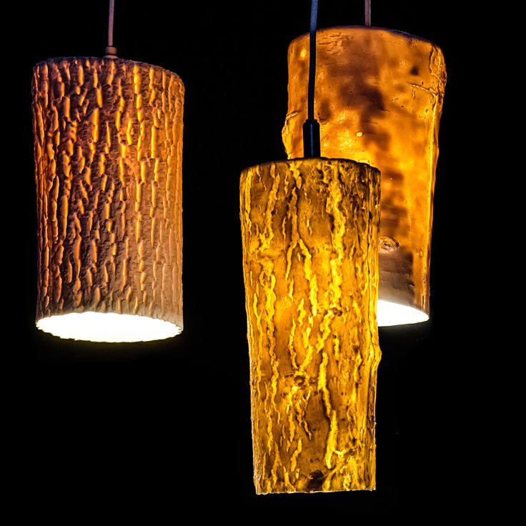 Forest Lights by Chari Cohen | MOCO LOCO