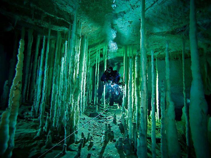 grotte sottomarine -Nelle blue holes, Bahamas, le grotte sottomarine profonde anche centinaia di metri Cerca con Google