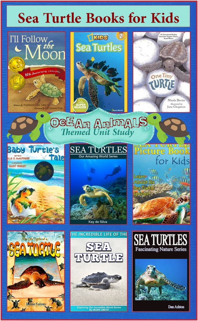 a study of the sea turtle Sea turtles have existed for millions of years, making them fascinating subjects of study in the last 20 years, the science of sea turtle biology has expanded at an exponential rate, leading to major advances in many areas.