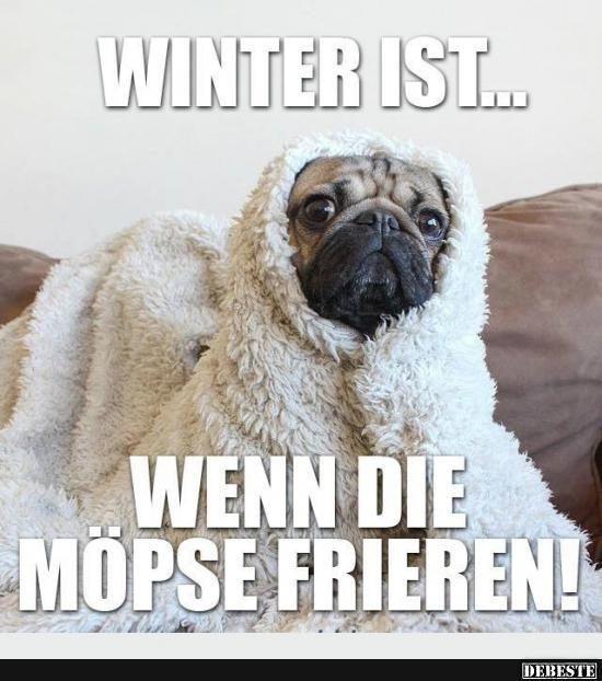 Die besten 25 wetter meme ideen auf pinterest kaltes - Wetterbilder lustig ...