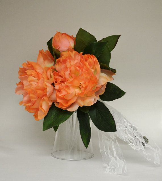 coral peonies wallpapers high - photo #38