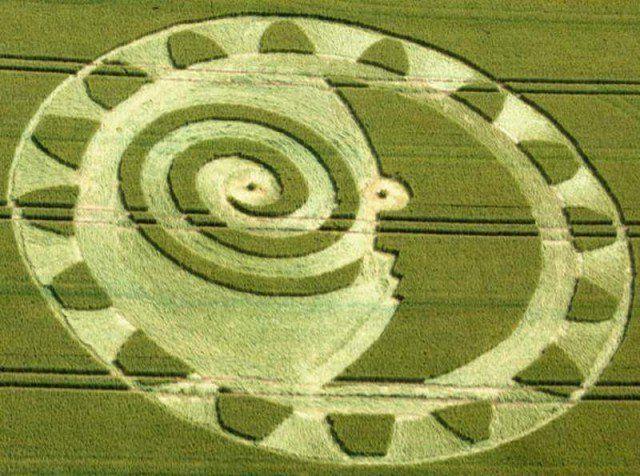 Crop Circle Hackpen Hill, near Winterbourne Bassett, Wiltshire, Hackpen Hill, near Winterbourne Bassett, Wiltshire, United Kingdom, July 2014 (via MrGyro)United Kingdom