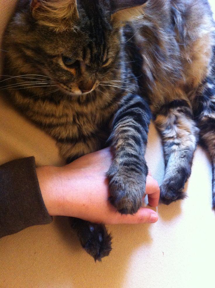 My baby holds my hand