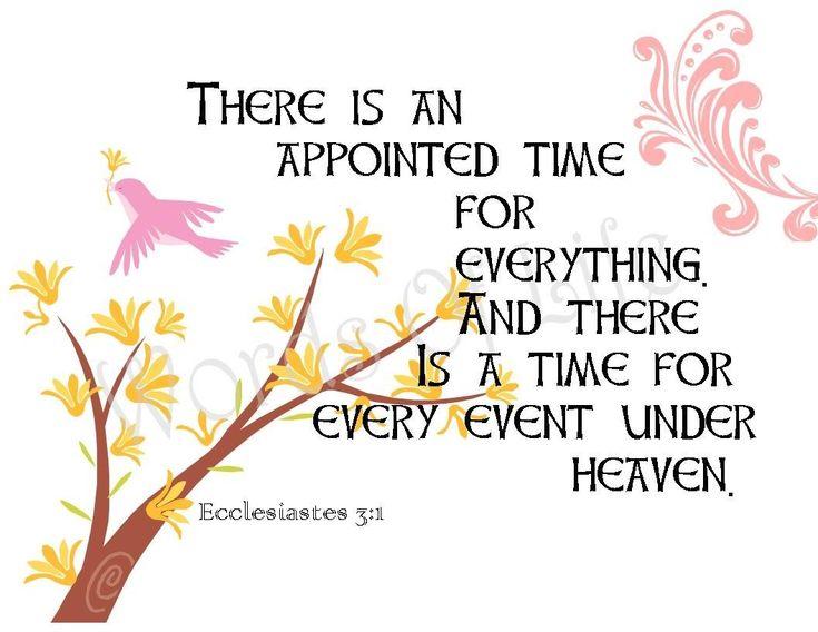 #Amen God's Time Patience Endurance Believe Truth Word Bible Scripture Ecclesiastes 3:1