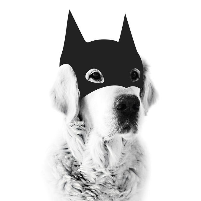 PRE-ORDER | MY DEER Bat Dog