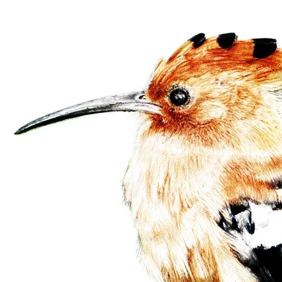 Pin Von Iris Auf Wandgestaltung: Pin Von Kerstin Auf Art