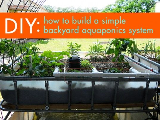 Diy Everything You Need To Know To Build A Simple 400 x 300