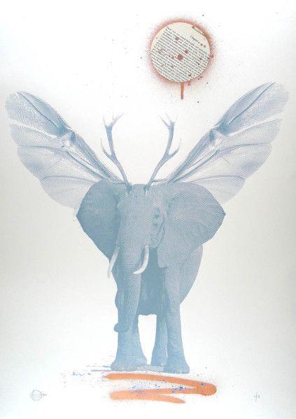 'Frank's Elephant' - Craig Keenan