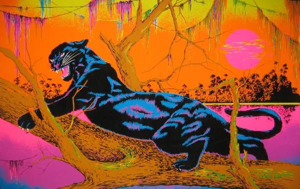 33 Best Blacklight Posters Images On Pinterest Black Light Posters Black Lights And Hippie Art