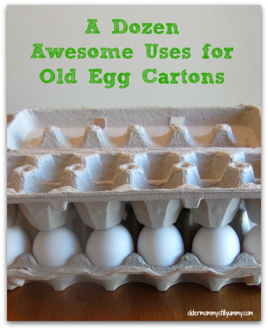 Wondering how you can possibly re-use an egg carton? Check out these Dozen Awesome Uses for Your Old Egg Cartons. - Older Mommy Still Yummy