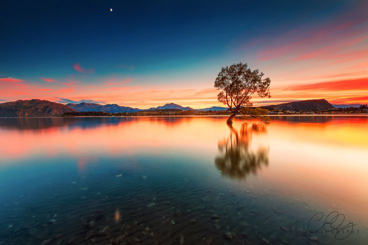 WANAKA'S   |  LONE   |    TREE - The trip to South Island NZ was a dream come true as I got to visit places I had only dreamt of.  Take for example the famous Wanaka Tree. I have shot at many locations before sunrise but this is different. Pure, peaceful, silent yet mesmerising.